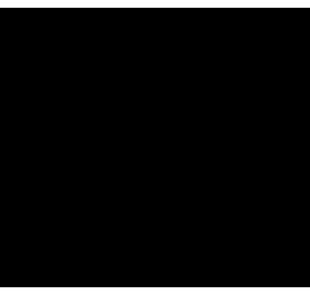 九州の濃厚醤油豚骨ラーメン馬力屋